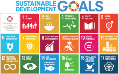 The UN SDG Goals: Health and Water, & The Opportunity to Serve